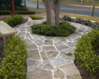 Sandstone flagging pathway