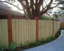 Pine fencing with feature posts
